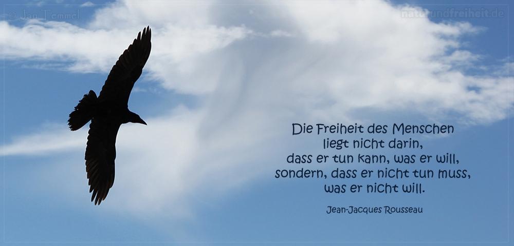 Freiheit   Zitate   In Freiheit Leben   Natur und Freiheit